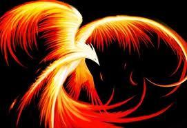 phoenix rising - libra