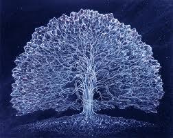 solstice tree winter