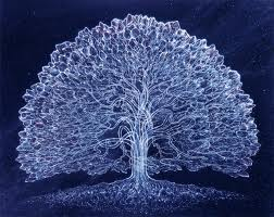 solstice tree winter